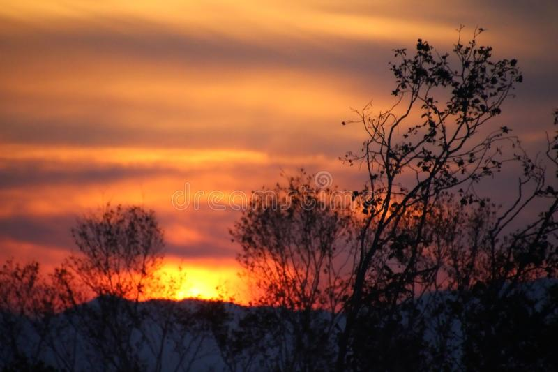 Pomarańczowy zmierzch w lasowym Sakhalin obraz stock