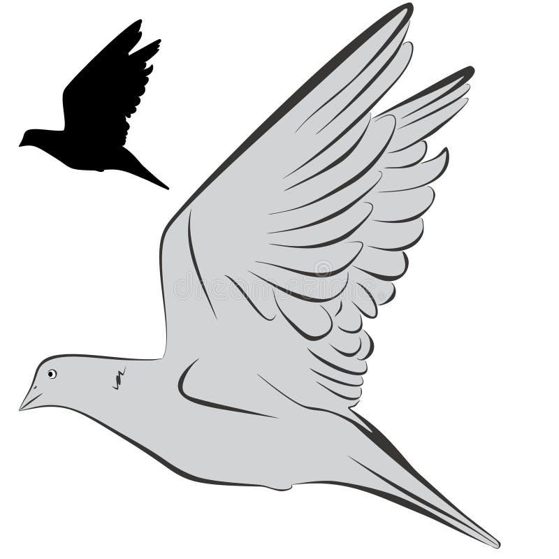 Pomba ilustração royalty free