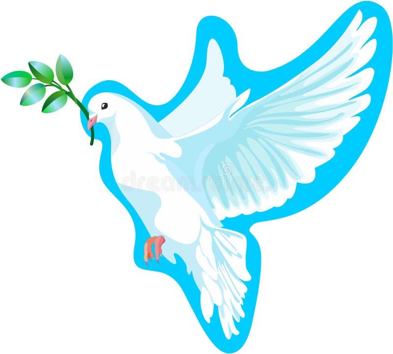 A pomba branca da paz, é isolado ilustração stock