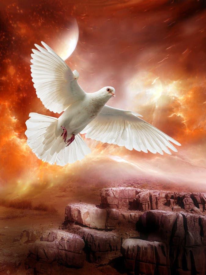Pomba branca, paz, esperança, amor, planeta estrangeiro imagens de stock royalty free