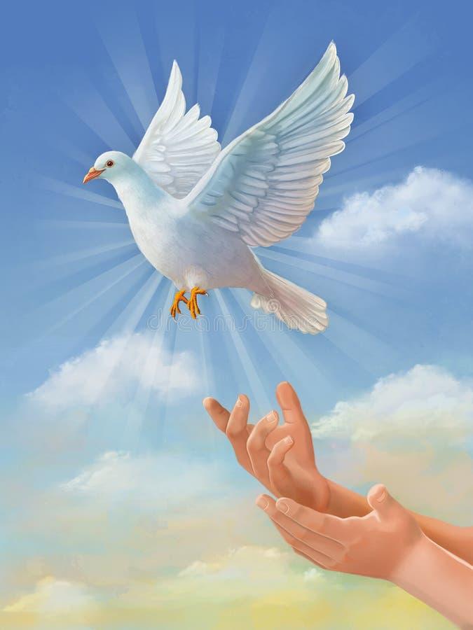 Pomba de voo do branco ilustração stock