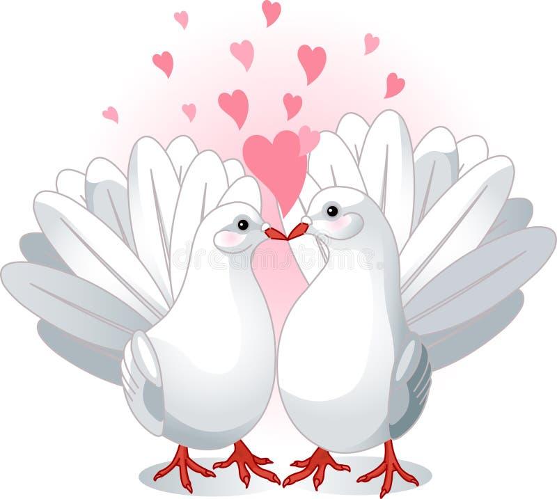 Pombas do amor ilustração royalty free