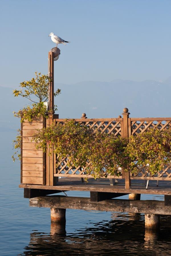 Pombo no terraço morno no lago do garda foto de stock