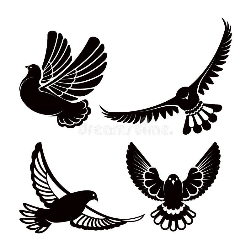 Pombo ou pomba, voo branco do pássaro com as asas espalhadas no céu ou grupo do assento ilustração stock