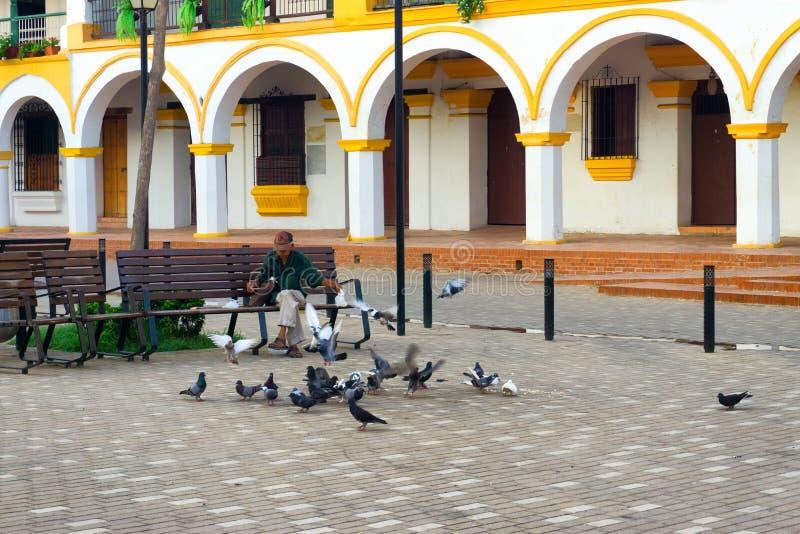 Pombos de alimentação do homem em Mompox foto de stock royalty free