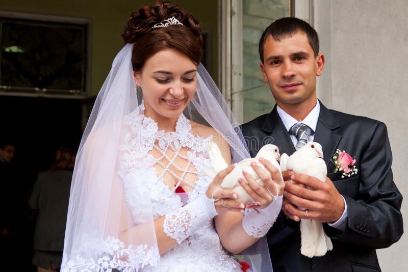 Pombos felizes do casamento da terra arrendada do noivo e da noiva foto de stock royalty free