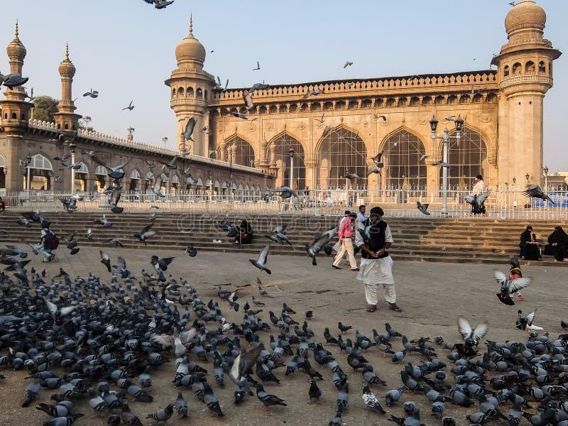 Pombos na frente de Mecca Masjid, um monumento famoso em Hyderabad, Índia fotografia de stock