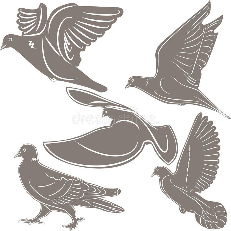 Pombos, um símbolo do pássaro, ilustração stock