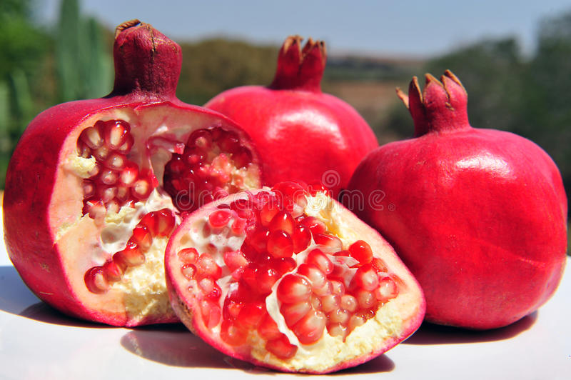 pomegranate плодоовощ стоковое фото