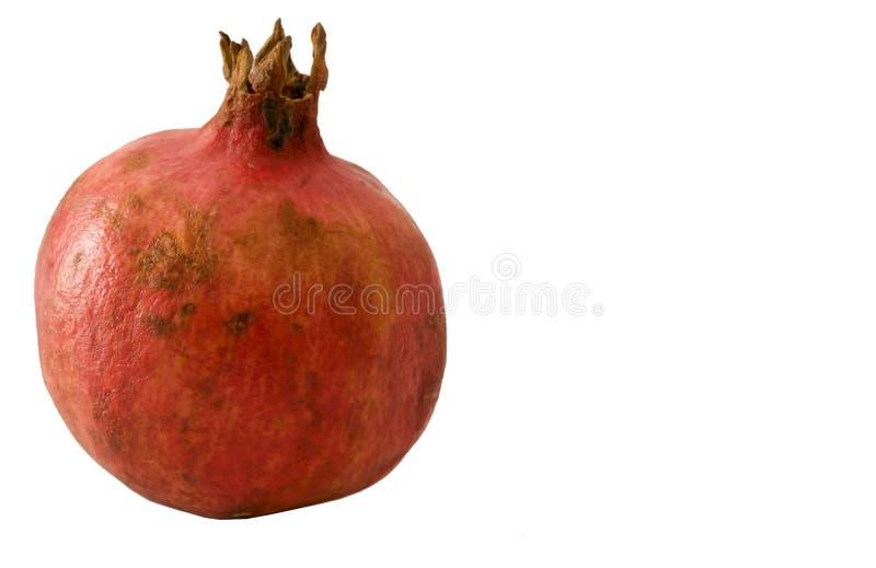 pomegranate royaltyfria foton