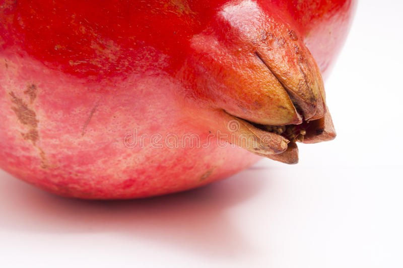 Download Pomegranate Stock Image - Image: 21918231