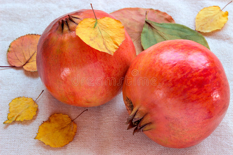 Pomegranate and autumn leaves on white background. Still life stock photos