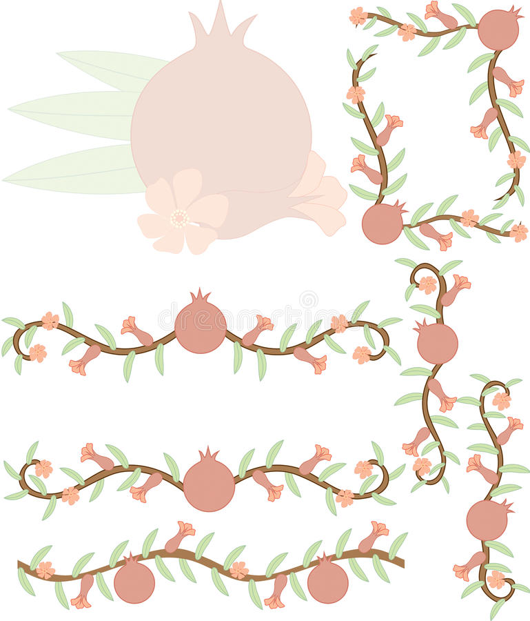 Pomegranate clipart royalty free stock images