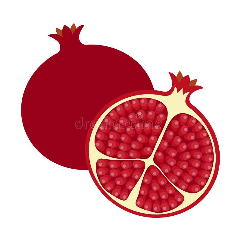 Pomegranate royalty free illustration