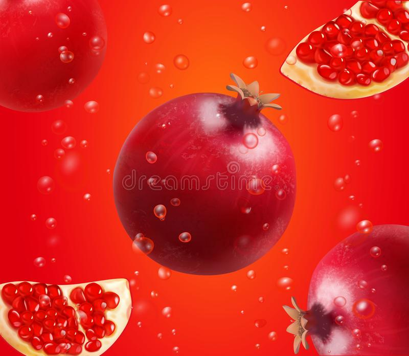 Pomegranate and fresh seeds of pomegranates. Vector illustration Advertising design vector illustration