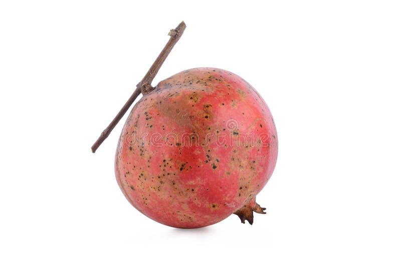 Pomegranate fruit isolated on white background stock images