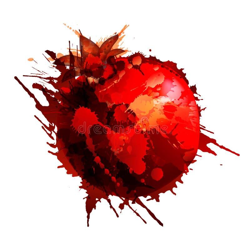Pomegranate made of colorful splashes royalty free illustration