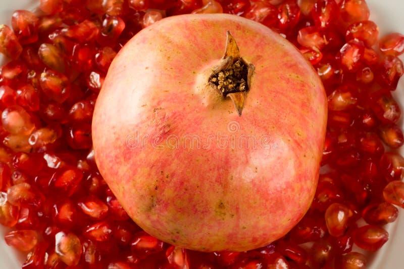 Pomegranate på korn royaltyfria foton