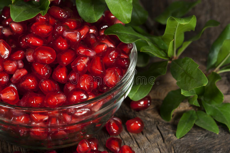 Pomegranate Seeds Leaves stock photos