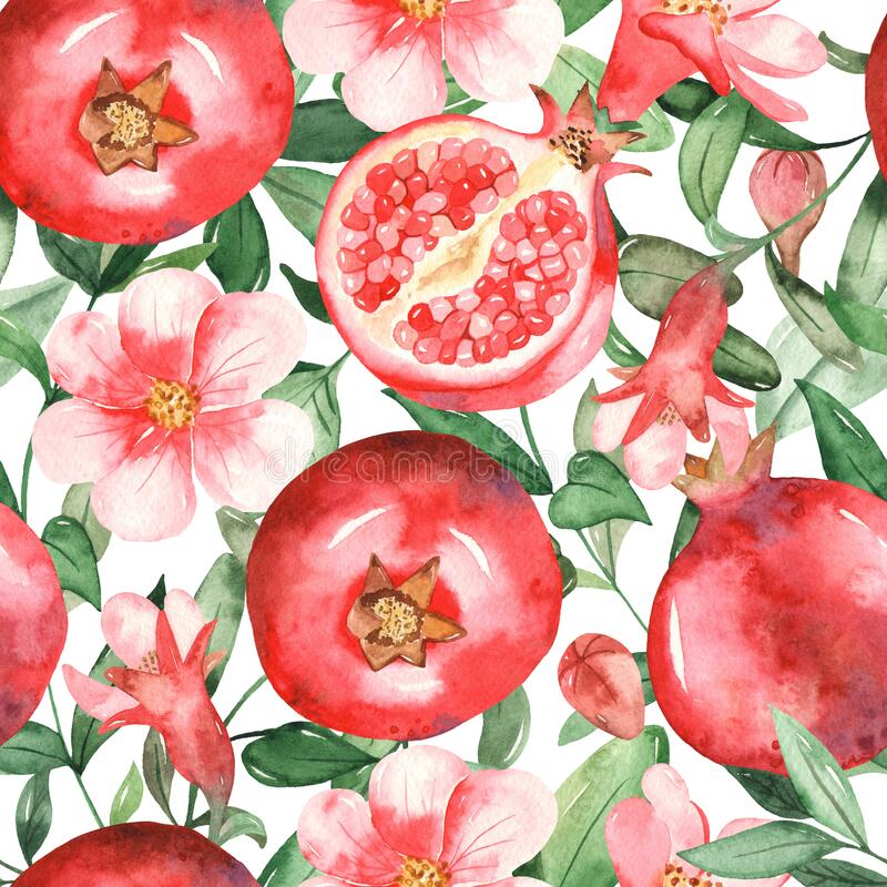 Watercolor seamless pattern with pomegranates, flowers, buds and pomegranate leaves on a white background. Pomegranates, flowers, buds and pomegranate leaves on vector illustration