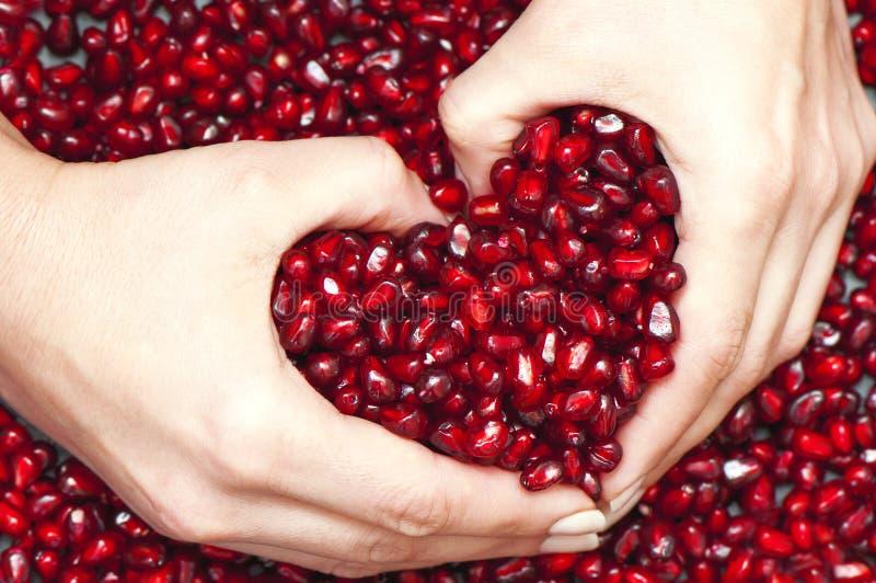 Pomegranateseeds hög royaltyfri fotografi