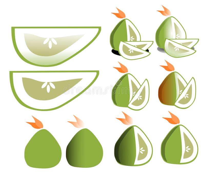 Pomelo. Image representing some ideas about the pomelo, the biggest citrus of the world stock illustration
