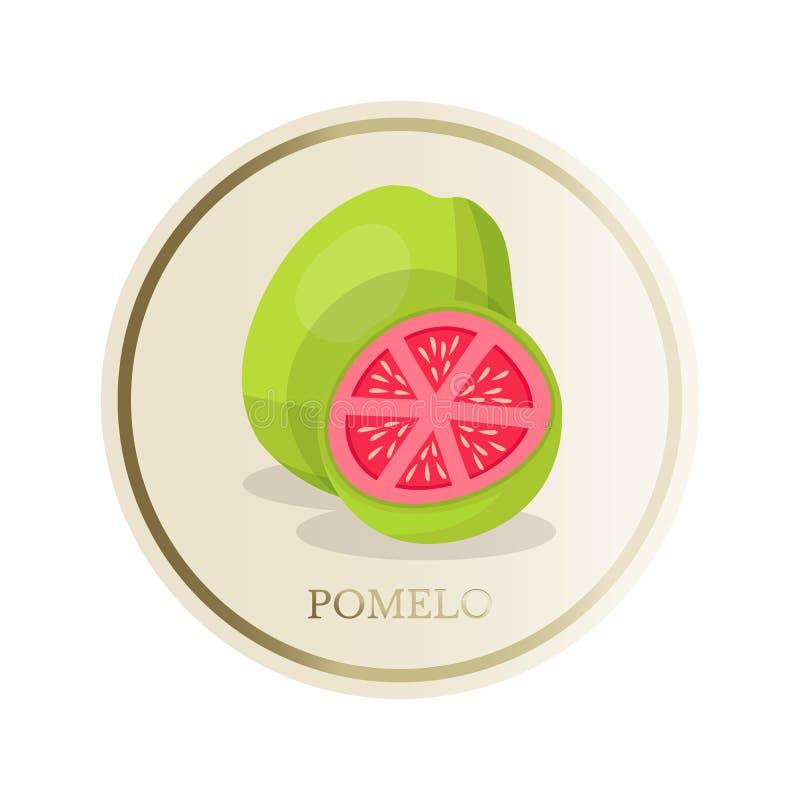 Pomelo flat circle sticker isolated on white background. Pomelo flat circle sticker. Sliced tropical exotic fruit vector illustration. Eco, organic homemade vector illustration