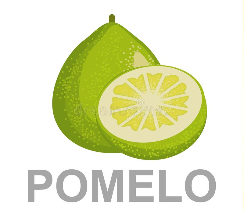 Pomelo fruit. Pomelo icon entirely and in a cut stock illustration