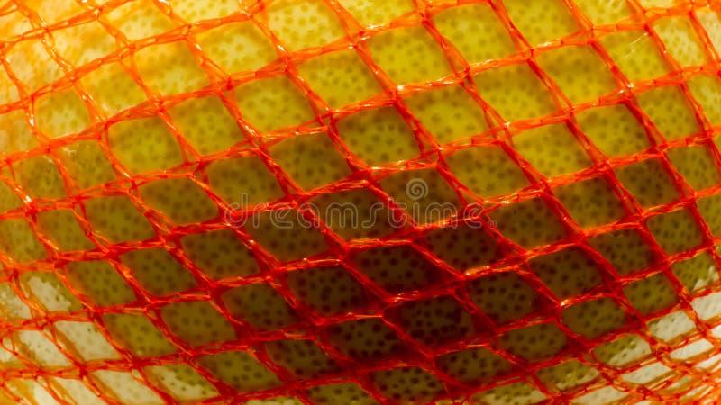 Pomelo fruit in the net stock photos