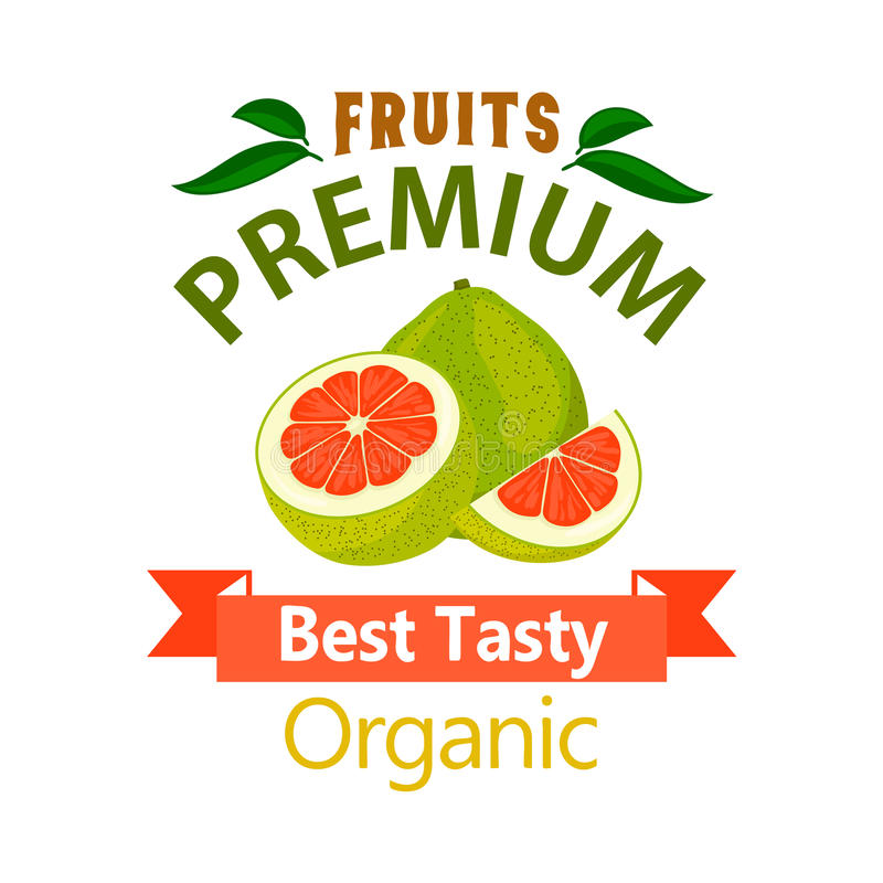 Pomelo organic fruits vector poster. Pomelo organic fruit poster. Vector icon for grocery, farm stores, packaging advertising, signboard, label, juice packaging royalty free illustration