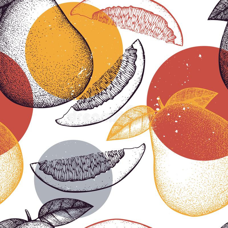 Seamless pattern with hand drawn pomelo illustrations. Vector citrus background. Summer fruits drawing for logo, icon, label, pack. Aging design royalty free illustration