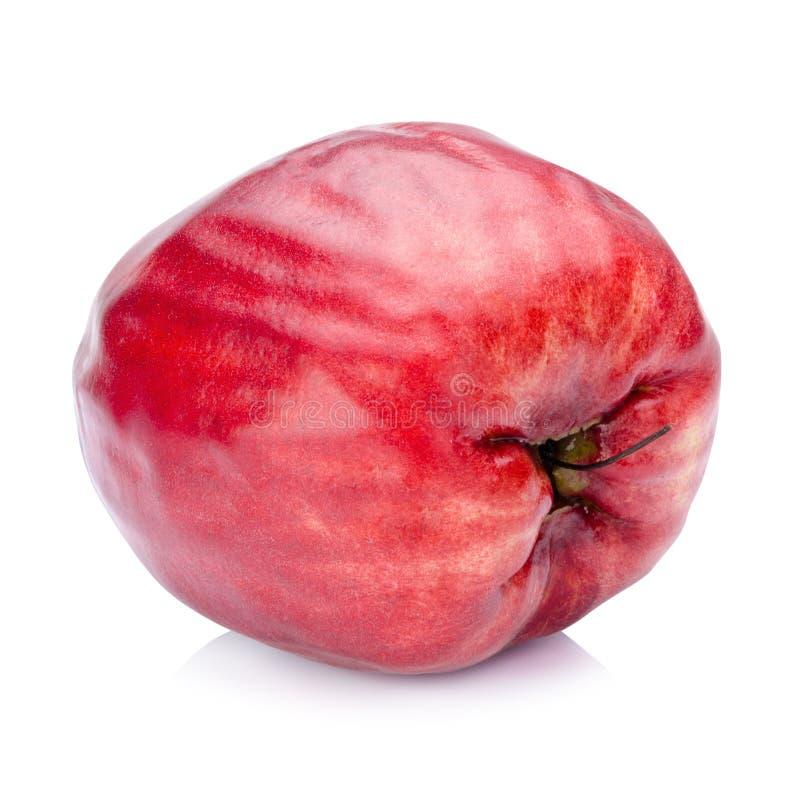 Pomerac, malaio Apple (malaccense do Syzygium (L ) Merrill & Perry) foto de stock royalty free