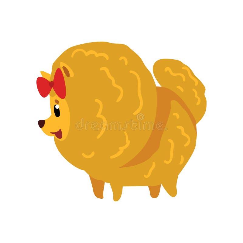 Pomeranian波美丝毛狗与红色弓,在白色背景的后面看法动画片传染媒介例证的狗字符 皇族释放例证