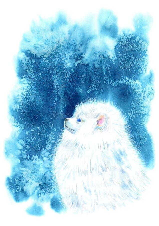 pomeranian spitz портрета Поздравительная открытка собаки иллюстрация вектора