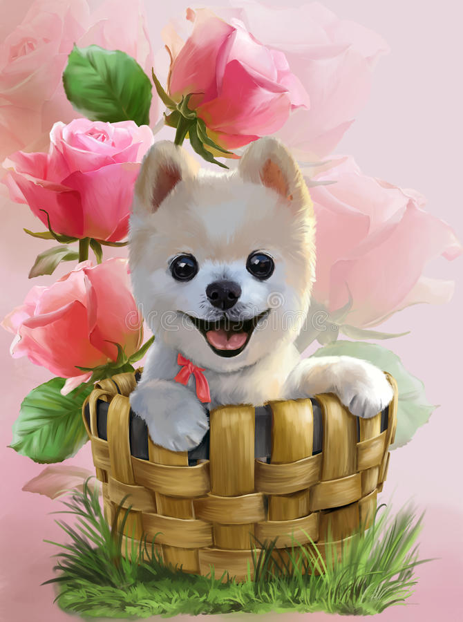 Pomeranian vattenfärgteckning royaltyfri illustrationer
