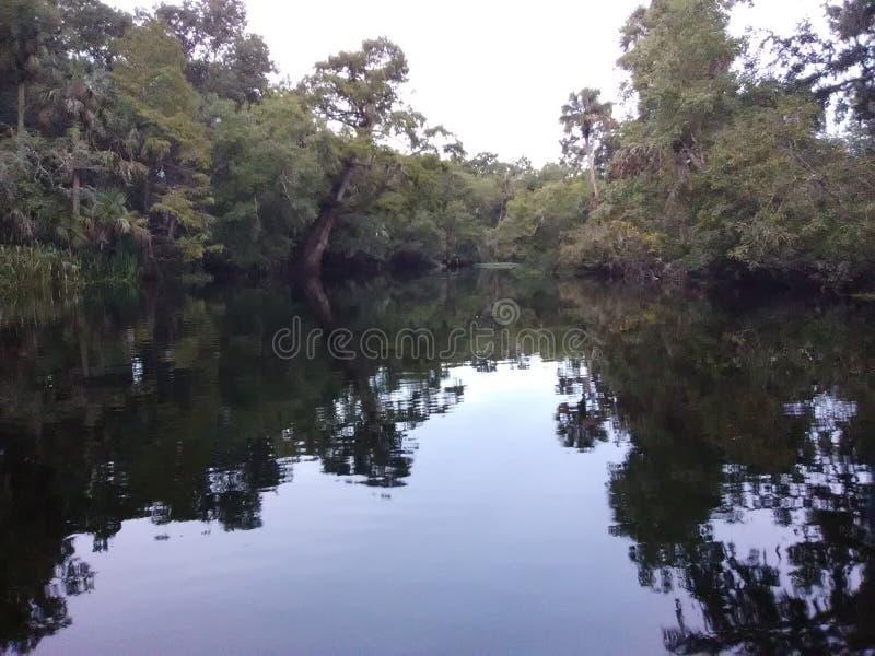 Pomeriggio del fiume di Burnell immagine stock libera da diritti