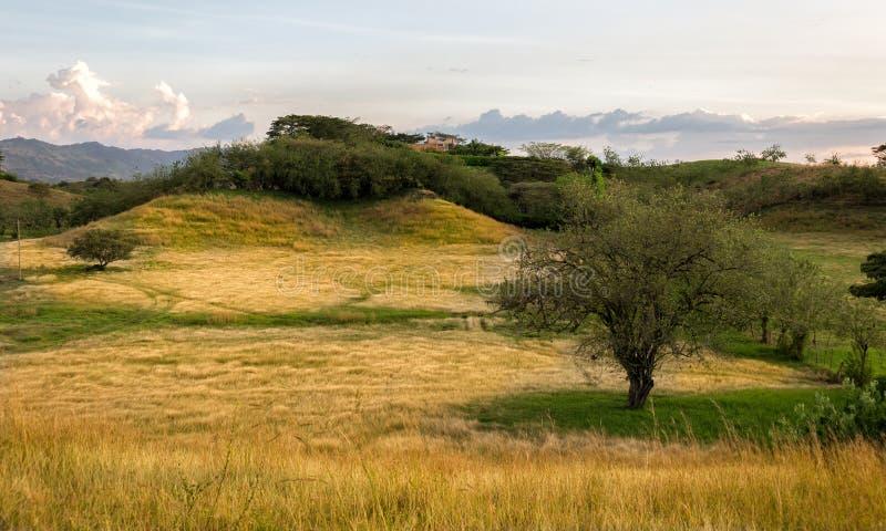 Pomeriggio soleggiato in Cartago, la Colombia fotografia stock libera da diritti