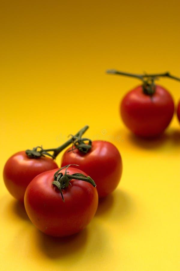 pomidor copyspace fotografia stock