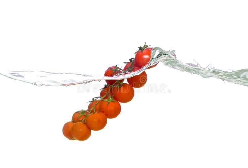 pomidor fala obrazy stock