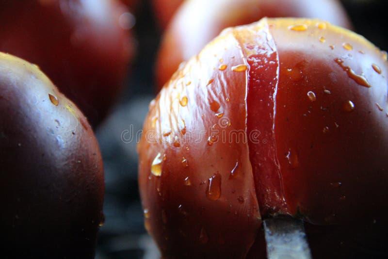 Pomidor & grula Smakowity, wyśmienicie, apetyczny, zdrowy Podpalający grillów warzywa Barbecued warzywa Gotujący na skewer fotografia royalty free