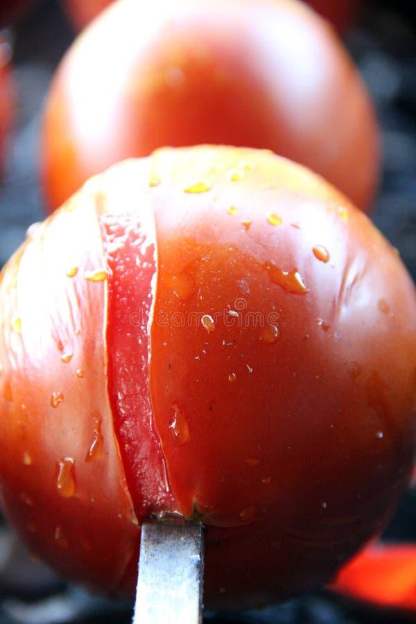 Pomidor & grula Smakowity, wyśmienicie, apetyczny, zdrowy Podpalający grillów warzywa Barbecued warzywa Gotujący na skewer obrazy royalty free