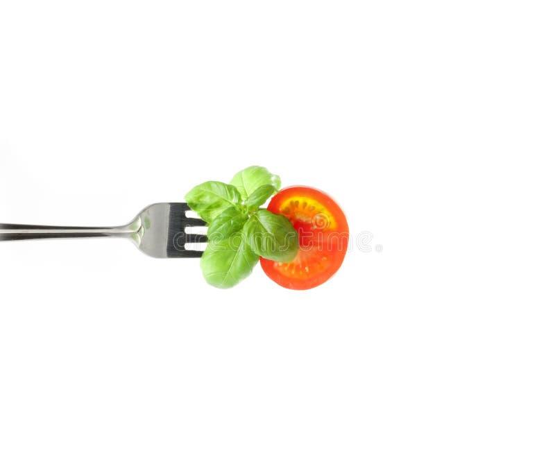 Pomidor i basil na rozwidleniu zdjęcia royalty free