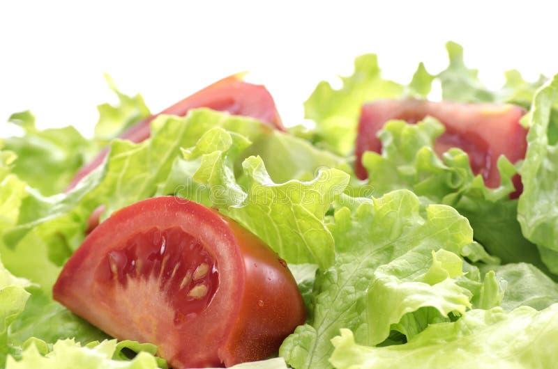 Pomidor i sałaty sałatka zdjęcie royalty free