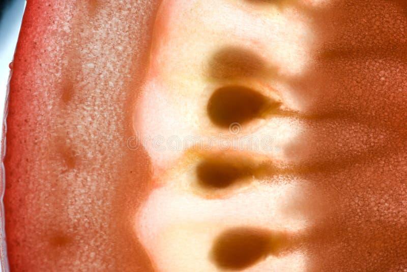 pomidor makro obraz stock