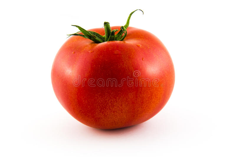 Pomidor na białej tło fotografii Piękny obrazek, półdupki obrazy stock