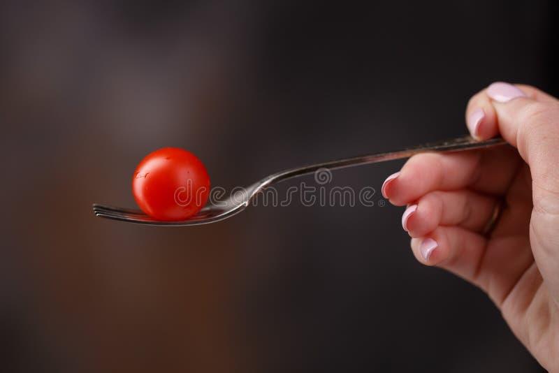 Pomidor na rozwidleniu w ręce na zmroku zamazywał tło zdjęcie royalty free