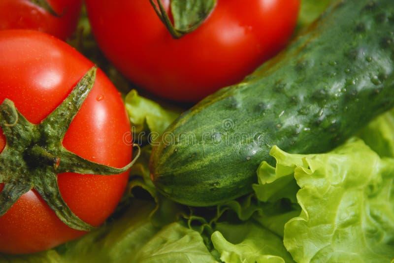 Pomidor, ogórkowy warzywo i sałatka, Opieki Zdrowotnej jedzenie obrazy stock