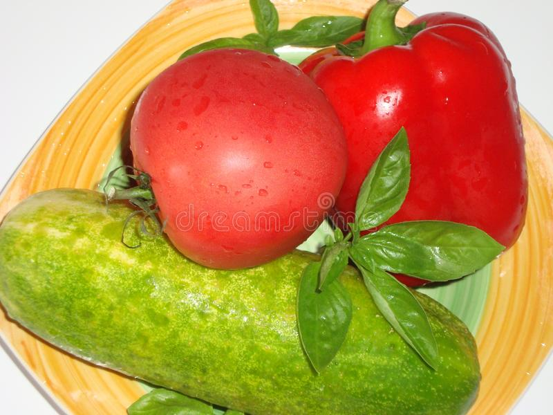 Pomidor, słodki pieprz, ogórek, basil obraz stock