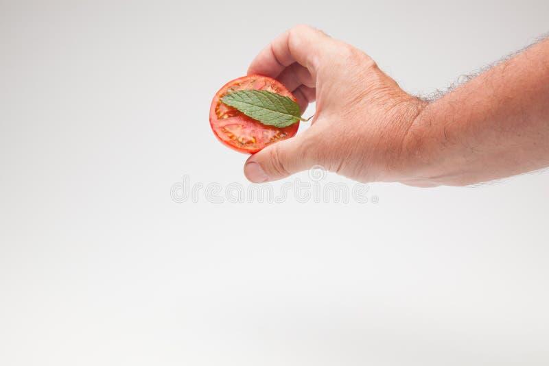 Pomidor w ręce na prostym tle fotografia stock