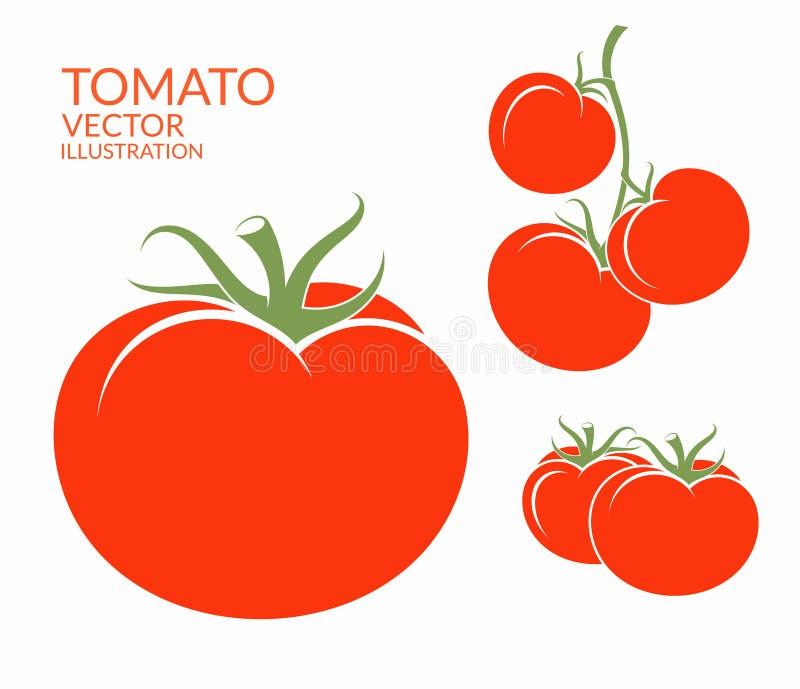 Pomidor warzywa białe tło royalty ilustracja